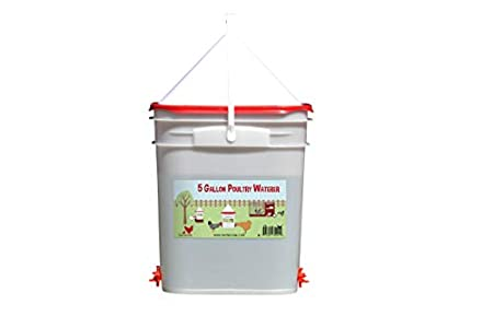 RentACoop 5 Gallon Chicken Waterer - 4 Horizontal Side Mount Poultry Nipples