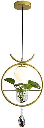 GYC Lámpara Colgante Moderna Lámpara Colgante Planta Maceta Candelabro Luz de Techo Hierro Creativo Comedor Pastoral Oficina Luminaria Verde Librería Decoración