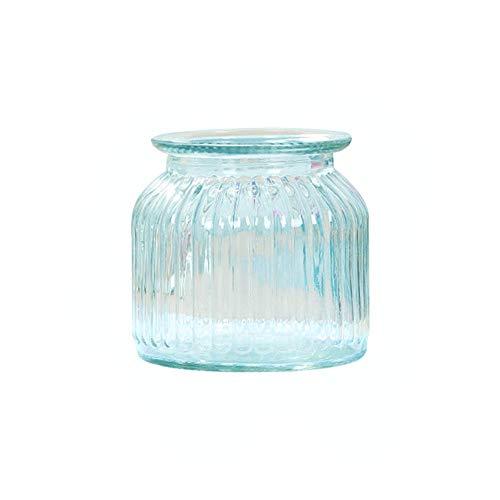 minminwu Simple Design Transparent Glass Flower Vase Decoration Wedding Decor Home&Office Decoration Blue S Size
