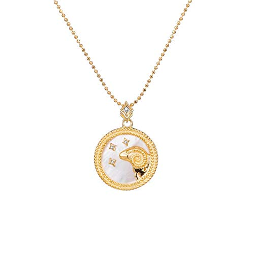DRTWE Zodiac Necklace, 12 Types Elegant Star Zodiac Sign 12 Constellations Necklaces Horoscope Pendants With Chain Charming White Color Choker Pendant Necklaces For Women Gift,Aries