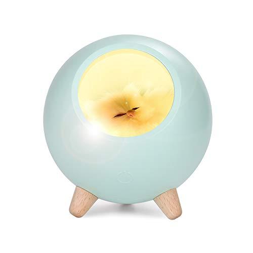 Niedliches LED Nachtlicht für Kinder | kinderzimmer Dekor | LED Nachttischlampe für Jungen oder Mädchen | Fühlen Sie sich in der Nacht komfortabel und sicher | Wiederaufladbares USB-lampe (Grün)