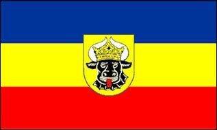 Bandiera//bandiera Pomerania occidentale hissflagge 90 x 150 cm