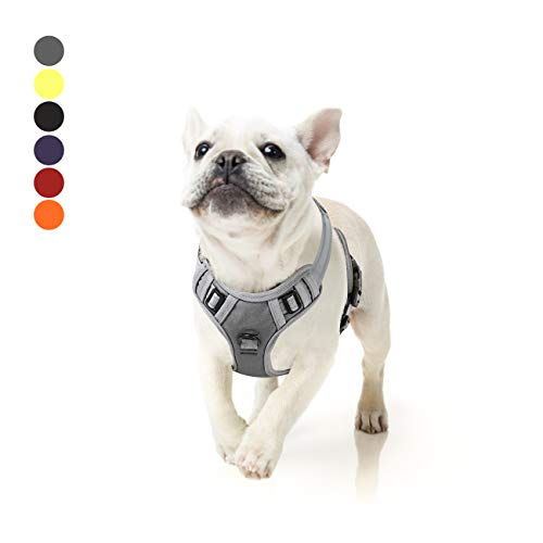 Hundegeschirr Reflektierendem Hunde Zuggeschirr Hundesport Gepolstert Brustgeschirr No Pull Geschirr Hund Verstellbares mit Reflektierendem Zuggeschirr Hundegeschirr Mittelgroße Hunde Grau M