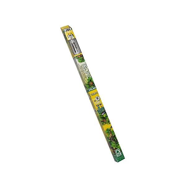 JBL Leuchtstoffröhre, Sonnenlichtröhre für Aquarienpflanzen, Solar Tropic T8