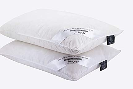 Adam casa plumas de pato soft-support almohada + FREE Rich Algodón Funda de almohada, algodón, Blanco, Pack de 2