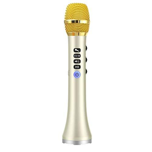 LIERSI Altavoz Profesional De Micrófono Bluetooth Inalámbrico Portátil 20W con Gran Poder...