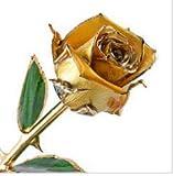 Yeelight - Rosa de oro de 24 quilates, rosa bañada en oro rosa de 24 quilates, tallo largo eterno, rosa real con exquisito soporte, regalo romántico para el día de San Valentín, aniversario