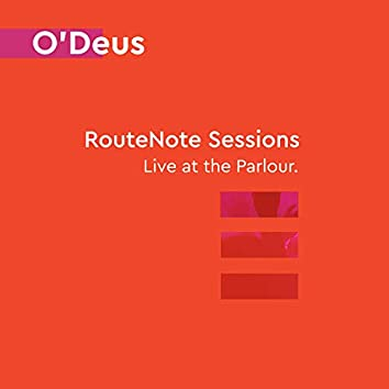 Into the Zion (RouteNote Sessions   Live at the Parlour)