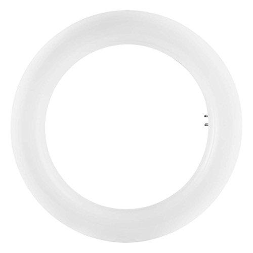 Osram LED Substitutbe T9 EM Lampe, Sockel: G10q, Cool White, 4000 K, 12 W, Ersatz für 22-W-, matt
