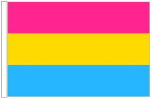 FlagSuperstore© Pansexual Bootsflagge 45 x 30 cm – Bäumehäuser Wohnwagen – Ärmel 45 cm x 30 cm – Gay Pride LGBTQ