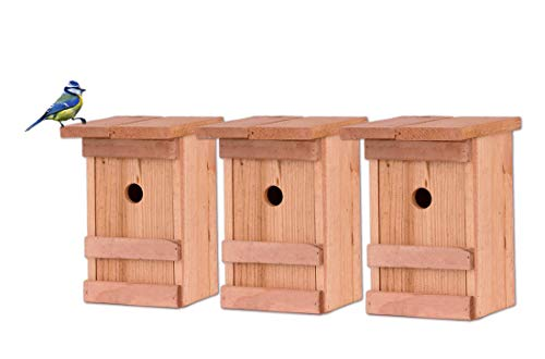 BigDean 3X Nistkasten Meisen Meisennistkasten Nistkästen Vogelhaus Vogelhäußchen Massivholz Vogelhaus 25 x 14,5 x 12 cm Einflugloch 28mm