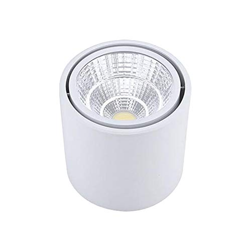 Spots LED Plafonnier Encastrable Orientable Rond 5W 7W 10W 15W 20W COB LED Downlight - Non-Dimmable,Lumière Encastrée, La Lumière De Piste [VHFIStj]