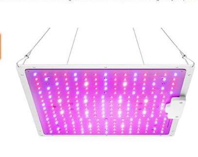 Roleadro Grow Plant Light Led con lámpara de Cultivo de Espectro múltiple IR UV para Plantas de Interior, Vegetales y Flores hidropónicos (240PCS)