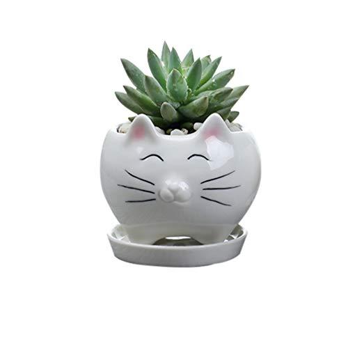Yardwe Blumentöpfe der Katze 1pcs kreative saftige Pflanzerpotentiometer Mini keramische Betriebsbehälter für Innenministerium