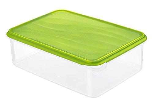 Rotho Rondo Frischhaltedose 5 l, Kunststoff (BPA-frei), grün / transparent, 5 Liter (31,5 x 24 x 10 cm)