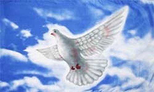 Fanshop Lünen Fahne Flagge Friedenstaube Taube weiß 90x150 cm Hissfahne mit Ösen Peace Frieden