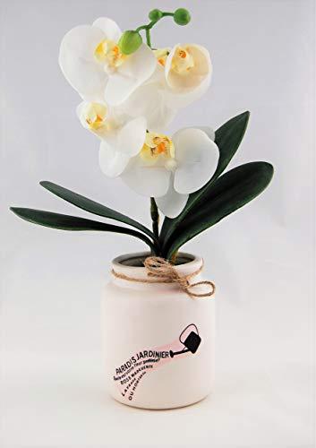 Homevibes Flores Artificiales con Maceta De Ceramica con Frase, Horquideas, Medida 10x29cm, Ideal para Decoracion del Hogar Interior o Exterior (Blanco)