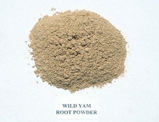 JustIngredients Wilde Yamswurzel Pulver, Wild Yam Root Powder, 1er Pack (1 x 250 g)