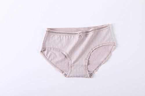 Anwasd7 Vrouwen ondergoed vrouwen mid-rise grote maat naadloos sexy kant meisje slip 100% katoen antibacteriële-Licht paars_L