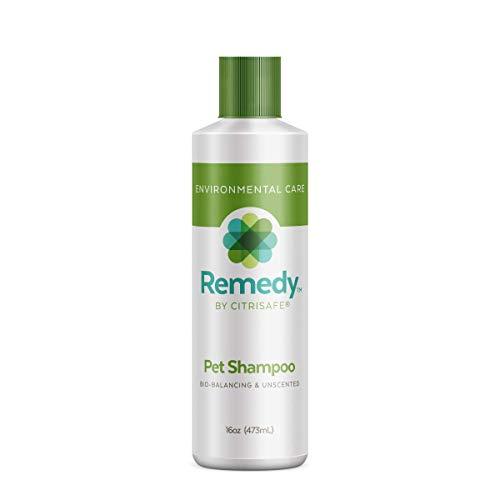 CitriSafe Remedy Pet Shampoo - Remove Mold-Contamination from Pets - Pet and Dog Shampoo with Shea Moisture for Shine - 16 oz