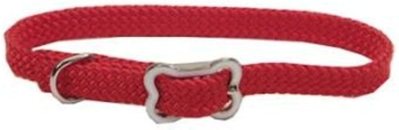 Coastal Pet 08501 PKB12 Dog Collar, 3 8 by 12Inch