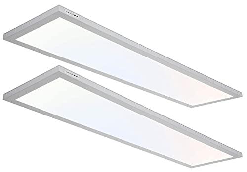 1x4 FT LED Flat Panel Selectable CCT Flush Mount Light, 4800lm 48W Silver Dimmable Edge-Lit Ceiling Light Fixtures,3000K/4000K/5000K Built-in Driver Surface Mount Light for Kitchen Garage,2 Pack