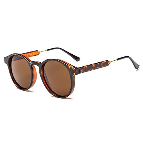 Comoda Gafas de Motocicletas Gafas Ciclismo Gafas Profesional Polarizado Motocicleta Gafas Bicicletas Gafas de Sol al Aire Libre Gafas de Sol UV Accesorios para automóviles Proteccion (Color : 6)