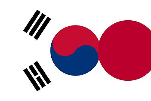 magFlags Bandera Large Japan and South Korea | Hybrid Flag of Japan and South Korea | Ibrida del Giappone e Della Corea del Sud | Bandera Paisaje | 1.35m² | 90x150cm