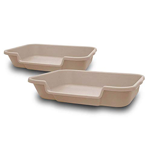 """Ne14pets Kitty Go Here Senior Cat Litter Box, Beach Sand Color, 2 Pans in one Box, Save on Shipping, Large 24"""" x 20"""