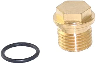 Briggs & Stratton 201495GS Plug for Pumps on Pressure Washers