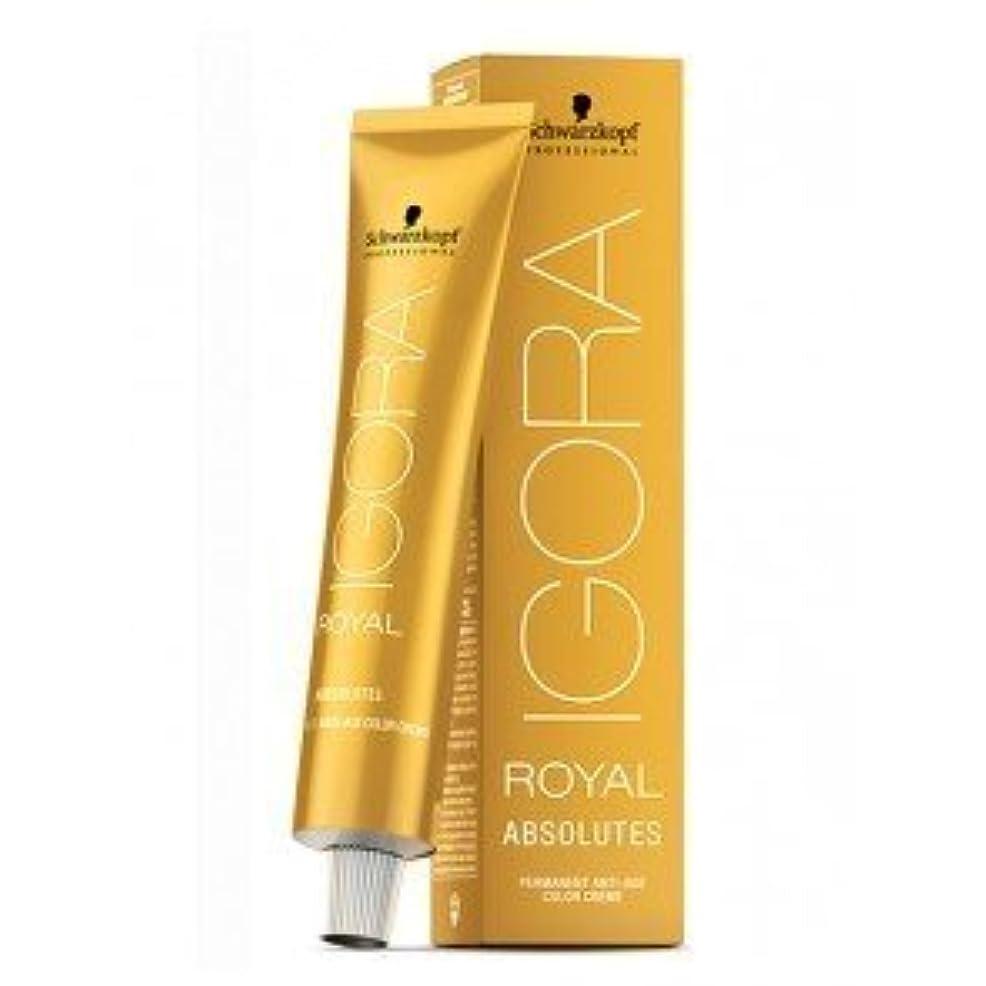 不十分なディスク可聴Schwarzkopf Professional Igora Royal Absolutes Hair Color - 8-50 Light Blonde Gold Natural [並行輸入品]