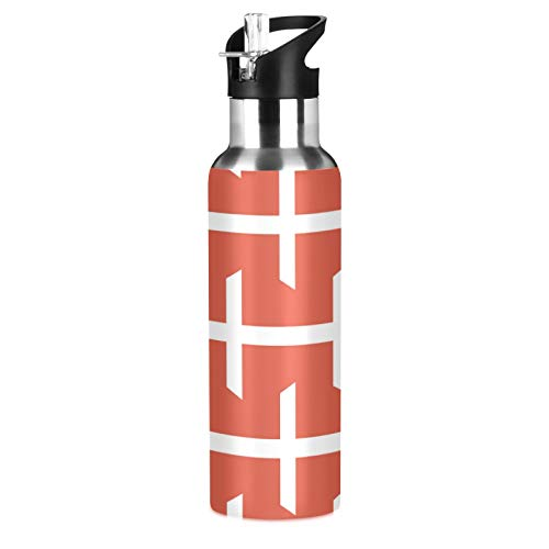 Botella de agua deportiva de acero inoxidable 304, con aislamiento al vacío con pajita (600 ml)