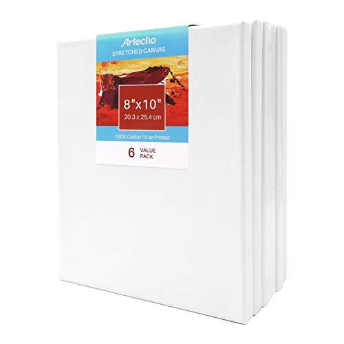 Artecho Lienzo estirado de 20 x 25 cm, blanco en blanco, 6 unidades, imprimado 100% algodón, paquete a granel para pintura, vertido acrílico, pintura al óleo y medios de artista