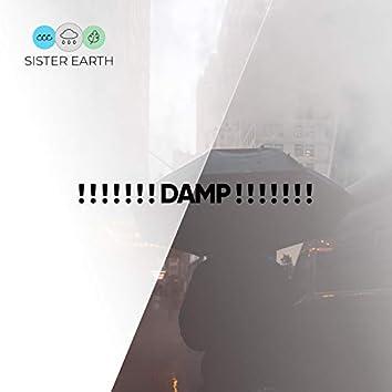 ! ! ! ! ! ! ! Damp ! ! ! ! ! ! !