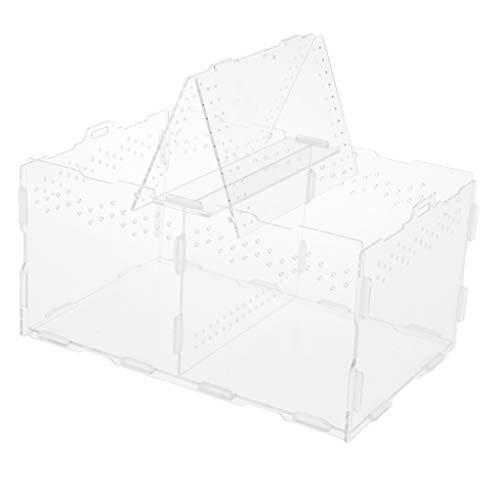 FLAMEER Acryl Terrarium Zuchtbox Fütterungsbox für Reptilien Schildkröte Spinne Insekt Schnecke Frosch, 30 x 20 x 15 cm
