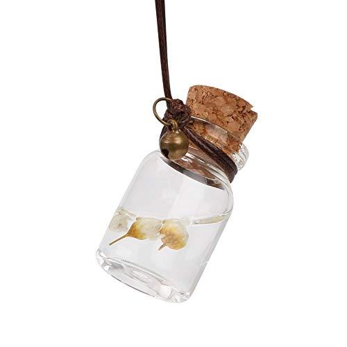 WATERMELON Aceites Esenciales for Colgar Botella vacía