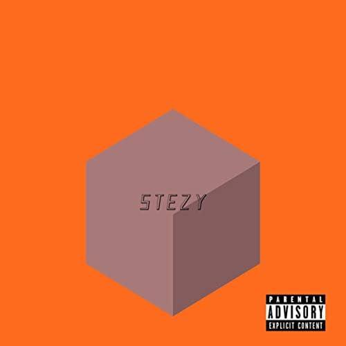 Stezy