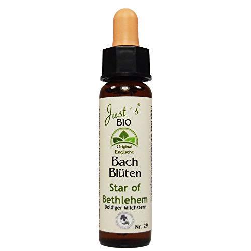 Star of Bethlehem Nr. 29 Just´s Original englische BIO Bachblüten Doldenmilchstern Blütentherapie für Mensch und Tier