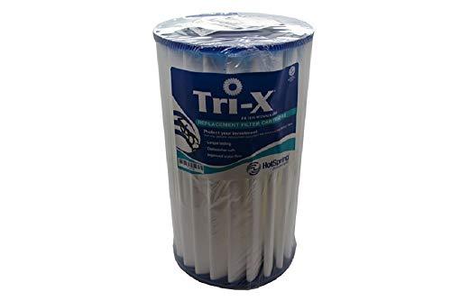 HotSpring Tri-X Filter