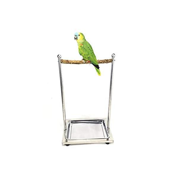 POPETPOP Altalena pappagalli Giochi per pappagalli Gabbie per pappagalli in Acciaio Inox Grande
