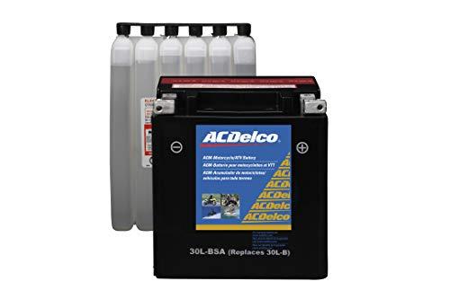 ACDelco Gold ATX30LBSA 12 Month Warranty Powersports AGM JIS 30CL-B-BSA Battery