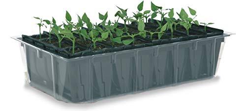 Haxnicks Tierra Garden Kit pour semis avec système pour Racines Profondes Rootrainers Rapides 32 Cells Multi-Color