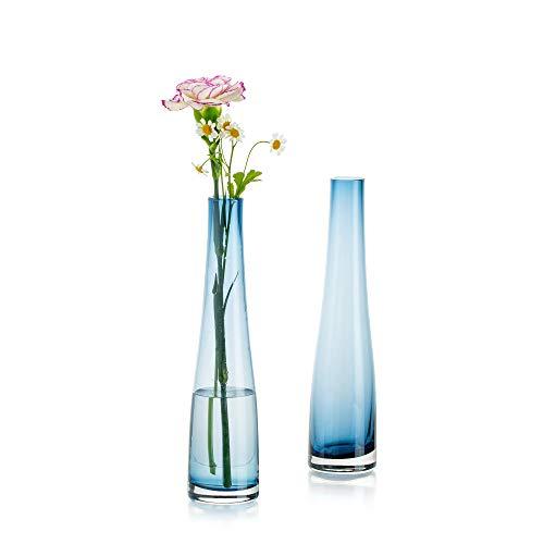 Florero De Vidrio para Flores, 2 Piezas Azul Florero Simple Bud Botellas Altas Y Delgadas De Cuello Estrecho para El Hogar Sala De Estar Oficina Decoración Interior Mesa De Boda Centros De Escritorio