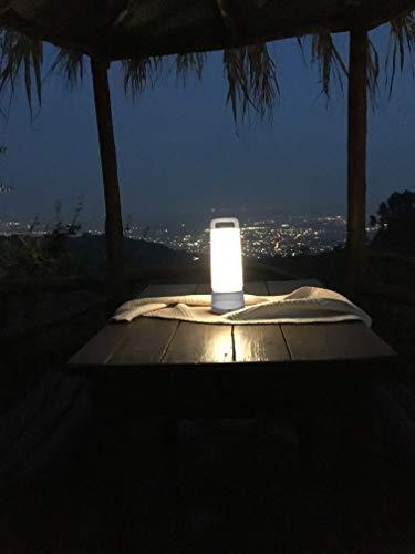 Eco Light P 9041 WH