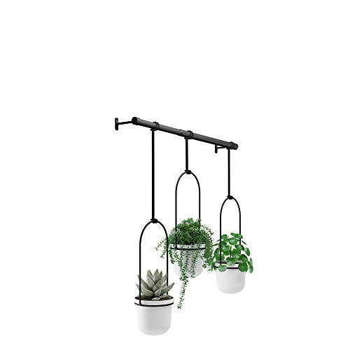 Umbra Triflora Hanging Planter for Window, Indoor Herb Garden, White/Black