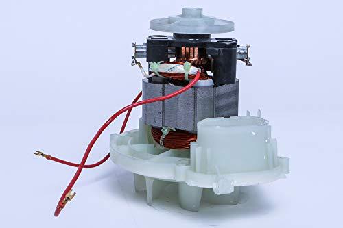 Cleanwizzard - Motor de repuesto para aspiradoras Vorwerk Kobold 120, 121, 122