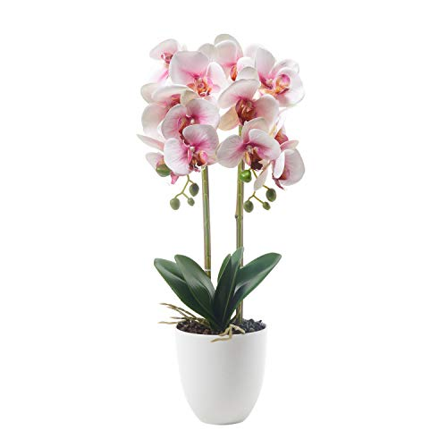 ENCOFT Alicemall Butterfly Orchid Artificial Flower 12 Heads Pink in White Simulation Phalaenopsis Bonsai with Ceramic Vase Wedding Party Home Centerpiece Decor (Pink White)