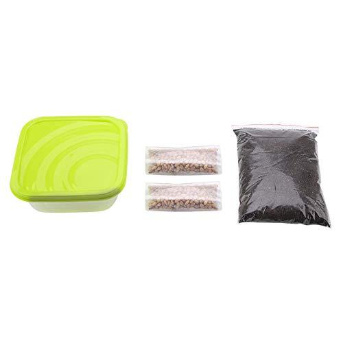 YOUTHINK Kit de germinación DIY Kit de Cultivo de Hierba para Mascotas orgánica Natural para Mascotas con Semillas orgánicas, Suelo orgánico y Maceta para Gatos (Color Aleatorio)