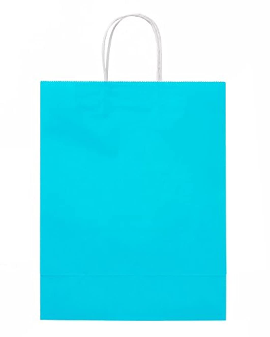 American Greetings Gift Bag Medium - Aqua
