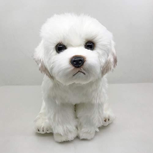 xinya Plüschtier Lebensechte Malteser Hund Malteser Welpe Plüschtier